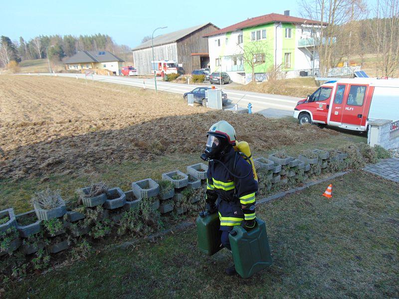 Finnentest in Unterlembach
